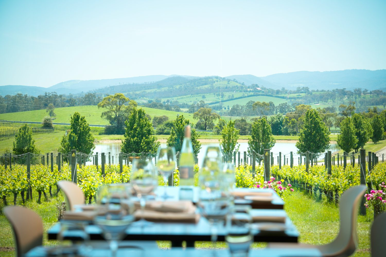 Best Wineries In Victoria With Restaurant